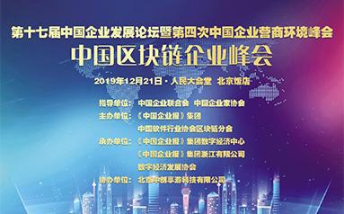 第十七屆中國企業發展論壇中國區塊鏈企業峰會在京召開