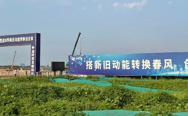 """培育新動能:山東濱州何以成""""標桿城市""""?"""