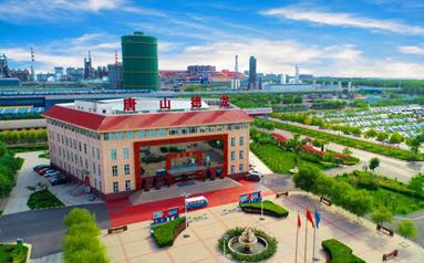 德龍鋼鐵:黨建引領企業走向綠色高質量發展之路