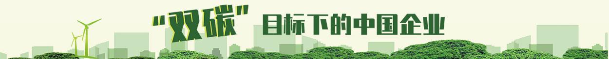 """""""双碳""""目标下的中国企业"""